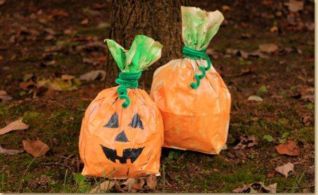 Pumpkins and craft bags